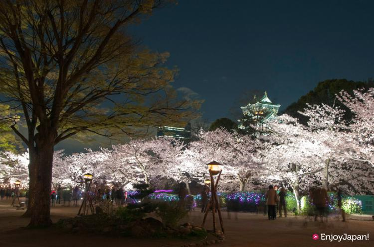Food stalls at the Ohanami・Yozakura ILLUMINAGE in Osaka Castle