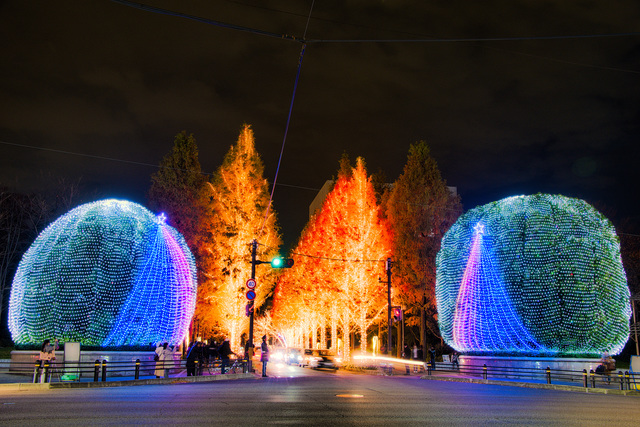 Winter Kyoto becomes a fantastic world! Introducing highlights and information of the largest illumination event in Kyoto,