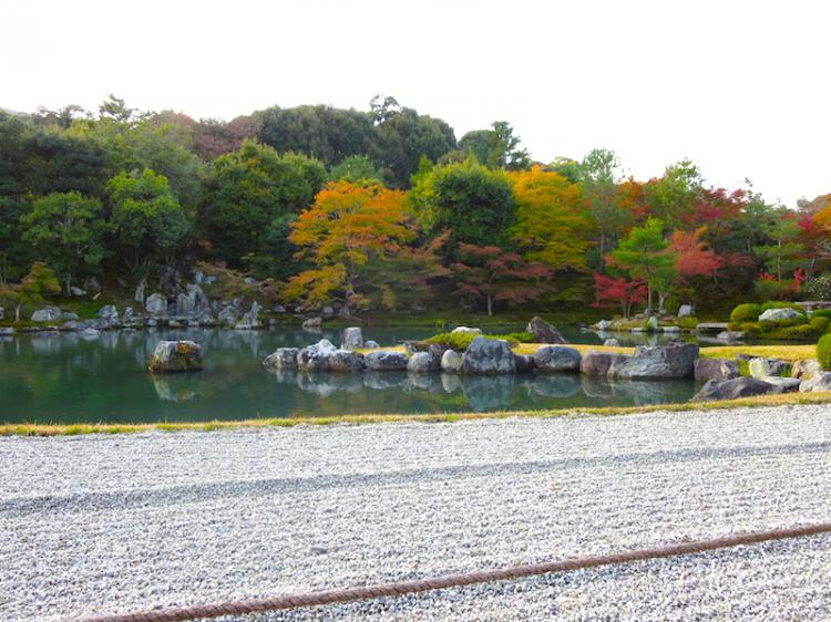 The MOMIJI in the garden is a must-see! World Heritage Site