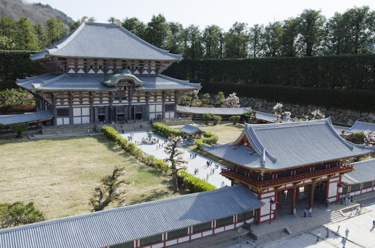 Best sightseeing place in Nara! Feel the Japanese history in